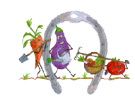 cropped-logo-trans.png